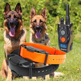 Dogtra ARC 1202S For 2 Dogs